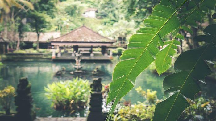 Boost-Camp-Bali-Gallery-6